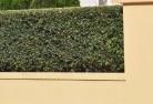 Allan Decorative fencing 30